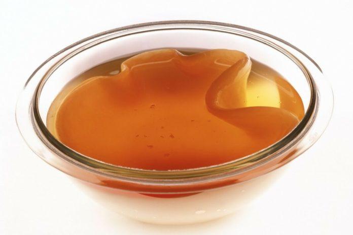 как вырастить чайный гриб - антибиотик из банки